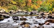 Fishing Creek Metal Prints - Upstream Metal Print by JC Findley