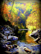 Smokey Mountains Posters - Upstream Poster by Karen Wiles
