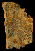 Featured Art - Uranium Ore Conglomerate by Ted Kinsman