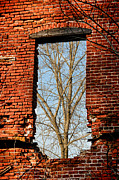 Broken Window Framed Prints - Urban Decay Framed Print by Olivier Le Queinec