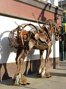 Street Art Pyrography Prints - Urban horse Print by Charles Seems