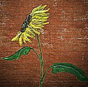 Urban Sunflower  Print by Chris Berry