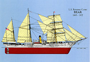 Bear Drawings - U.S. Revenue Cutter Bear by Jerry McElroy