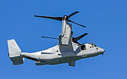 Kate Brown - USMC Osprey