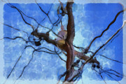 Water Color Digital Art Prints - Utility Pole Print by Ayse T Werner