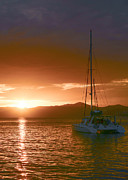 Vacation Sunset Print by    Michael Glenn