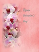 Engagement Prints - Valentine Day Card with Beautiful Orchids Print by Yali Shi
