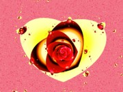 Anastasiya Malakhova - Valentine Rose