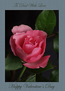 Photography By Govan; Vertical Format Framed Prints - Valentine Rose  Dad Framed Print by Andrew Govan Dantzler