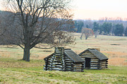 Log Cabins Art - Valley Forge Cabins by David Jackson