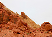 Nj Photographs Framed Prints - Valley of Fire Framed Print by Iconic Images Art Gallery David Pucciarelli
