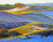 Massachusetts Pastels Posters - Valley of the Dunes Poster by Ed Chesnovitch