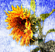 Las Cruces Print Posters - Van Gogh Moment Sunflower Decor Poster by Barbara Chichester