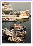 Framed Photos Prints - Vancouver Fishing vessels Print by Jack Pumphrey
