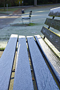 Decorative Benches Photo Framed Prints - Vancouver Frosty Morning Framed Print by Marilyn Wilson
