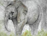 Vanishing Thunder Series-baby Elephant I Print by Suzanne Schaefer