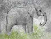 Elephant Art Prints - Vanishing Thunder Series-Baby Elephant II  Print by Suzanne Schaefer