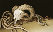 Longhorn Paintings - Vanitas by Jenny Barron