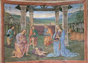 Shepherds Framed Prints - Vannucci Pietro Known As Perugino, The Framed Print by Everett