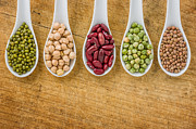 Palatia Photo - Various legumes on...