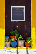 Entrance Door Photos - Vases on the Doorway by Carlos Caetano
