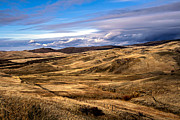 Grazing Horse Photo Posters - Vast View of the Rolling Hills Poster by Robert Bales