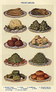 Featured Acrylic Prints - Vegetables  1900s Uk Isabella Beeton Acrylic Print by The Advertising Archives