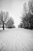 Snow Covered Street Framed Prints - vehicle tracks on snow covered street in small rural farming community village Forget Saskatchewan C Framed Print by Joe Fox
