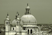 Domes Of Venice Photos - Venetian Basilica Salute by Julie Palencia