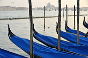 Lined Up Framed Prints - Venetian lagoon and moored gondolas Framed Print by Sami Sarkis