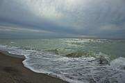 Amazing Jules - Venice Beach