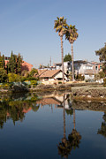 Venice Beach Palms Prints - Venice Canal Palms Reflection Print by Tomas Benavente