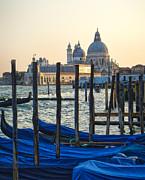 Gregory Dyer - Venice Italy - Santa Maria della Salute and Gondolas