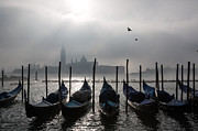 Crows Prints - Venice mist    ery Print by Matteo Colombo