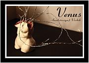 Venus Print by Anastasiya Verbik