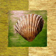Shell Pattern Digital Art Framed Prints - Verde Beach Framed Print by Lourry Legarde