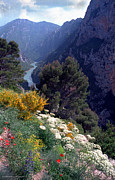 Gerald MacLennon - Verdon Gorge in High...