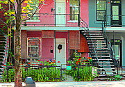 Montreal Memories. Art - Verdun Flower Boxes Pink House Fenced Front Garden Red Flowers Staircase Scenes Carole Spandau by Carole Spandau