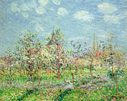 Pointillist Framed Prints - Verger en Fleur Framed Print by Gustave Loiseau