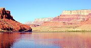 Cliff Lee Posters - Vermillion Cliffs And Colorado River In Morning Light Poster by Douglas Taylor