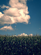 Field. Cloud Photo Prints - Vermont Cornfield Print by Edward Fielding