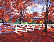 Pastoral Landscape Framed Prints - Vermont Fence Framed Print by  David Lloyd Glover