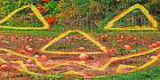 Harvest Time Mixed Media Prints - Vermont Pumpkin Patch - Halloween Transition Print by Steve Ohlsen