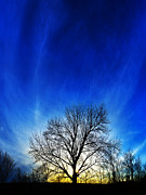 Photographic Art Art - Vernal Sunset 1 by ABeautifulSky  Photography