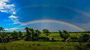 Waukesha County Posters - Vernon Marsh Double Rainbow Poster by Randy Scherkenbach