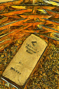 Teara Na Metal Prints - Very beautiful Gold ingots Metal Print by Teara Na