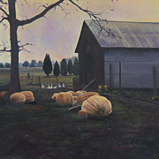 David P Zippi - Very Big Pumpkins