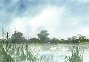 Reeds Painting Originals - Vets Park Plein Air 7-17-13 by Sean Seal