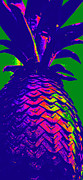 Laurie Pike - Vibrant Pineapple
