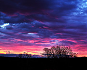 Tim Buisman Metal Prints - Vibrant Sunrise Metal Print by Tim Buisman